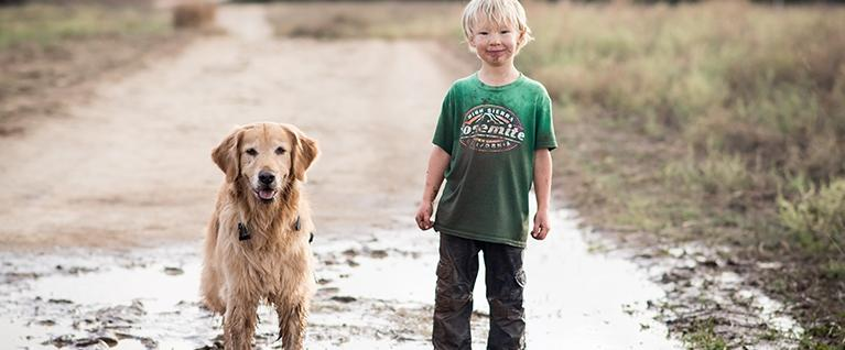 Family Dogs: Comfort Counts for Kids, Too