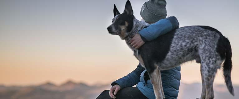 When Love at First Sight Needs A Little Help... 10 Smart Ways to Bond With Your Dog